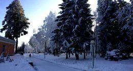 Zima10